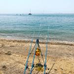 【合計1万円】ちょい投げ釣り初心者にオススメの、遠投もできる竿とリール。